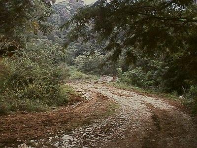 xalapa hills 4