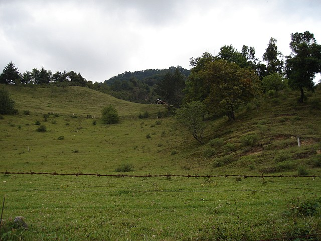 Fingering Meadows