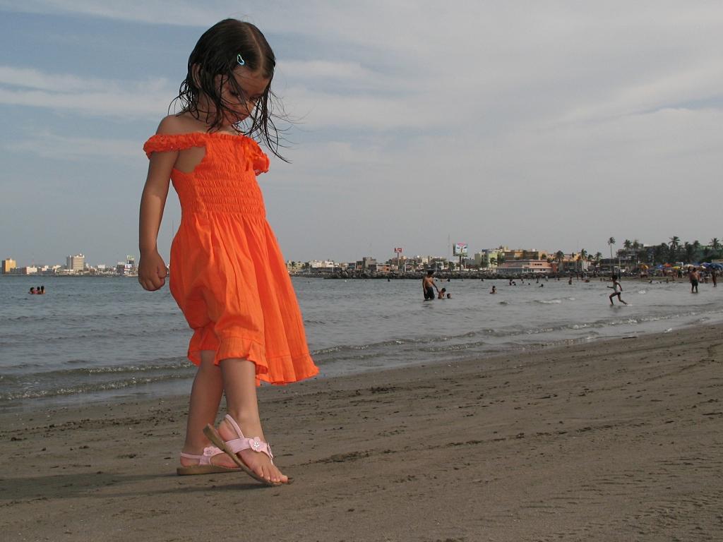 alice on the beach veracruz large A controversial ban on gay men